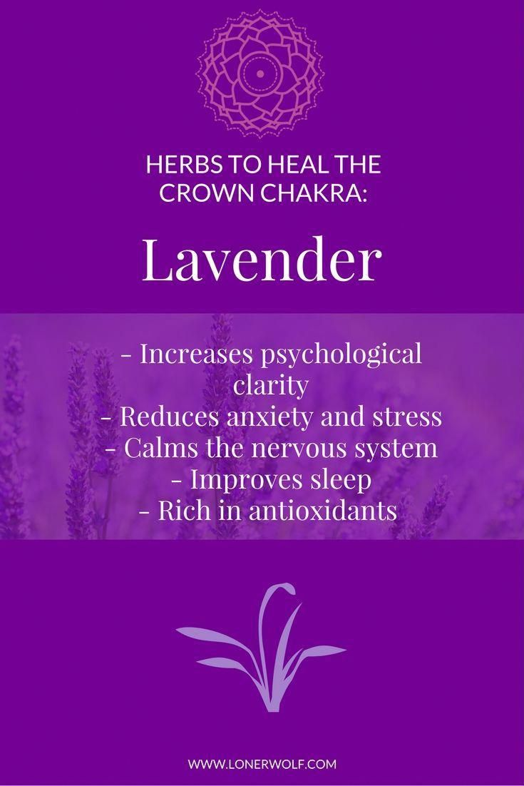 Lavender is a heavenly way to heal the CROWN CHAKRA. Click ...