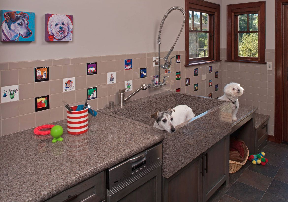 29 Sweet Dog Shower Ideas Pet Washing Stations In 2020 Animal