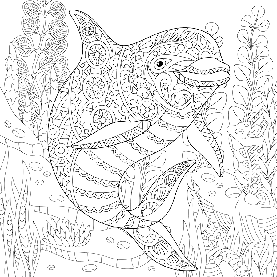 underwater dolphin coloring page