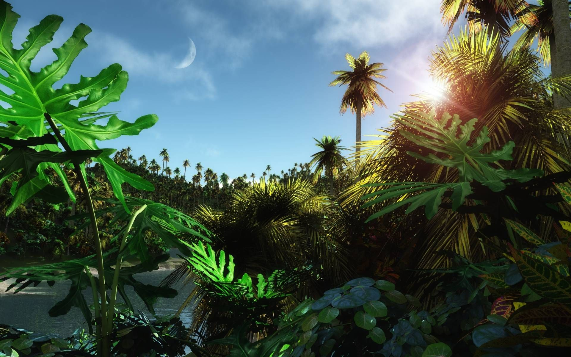 Wallpapers For Animated Jungle Background Hd Jungle Wallpaper Wallpaper Cool Wallpaper