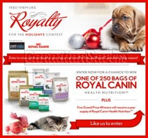Win A Year S Supply Of Royal Canin Pet Food From Pet Valu Food Animals Royal Canin Holiday Contest