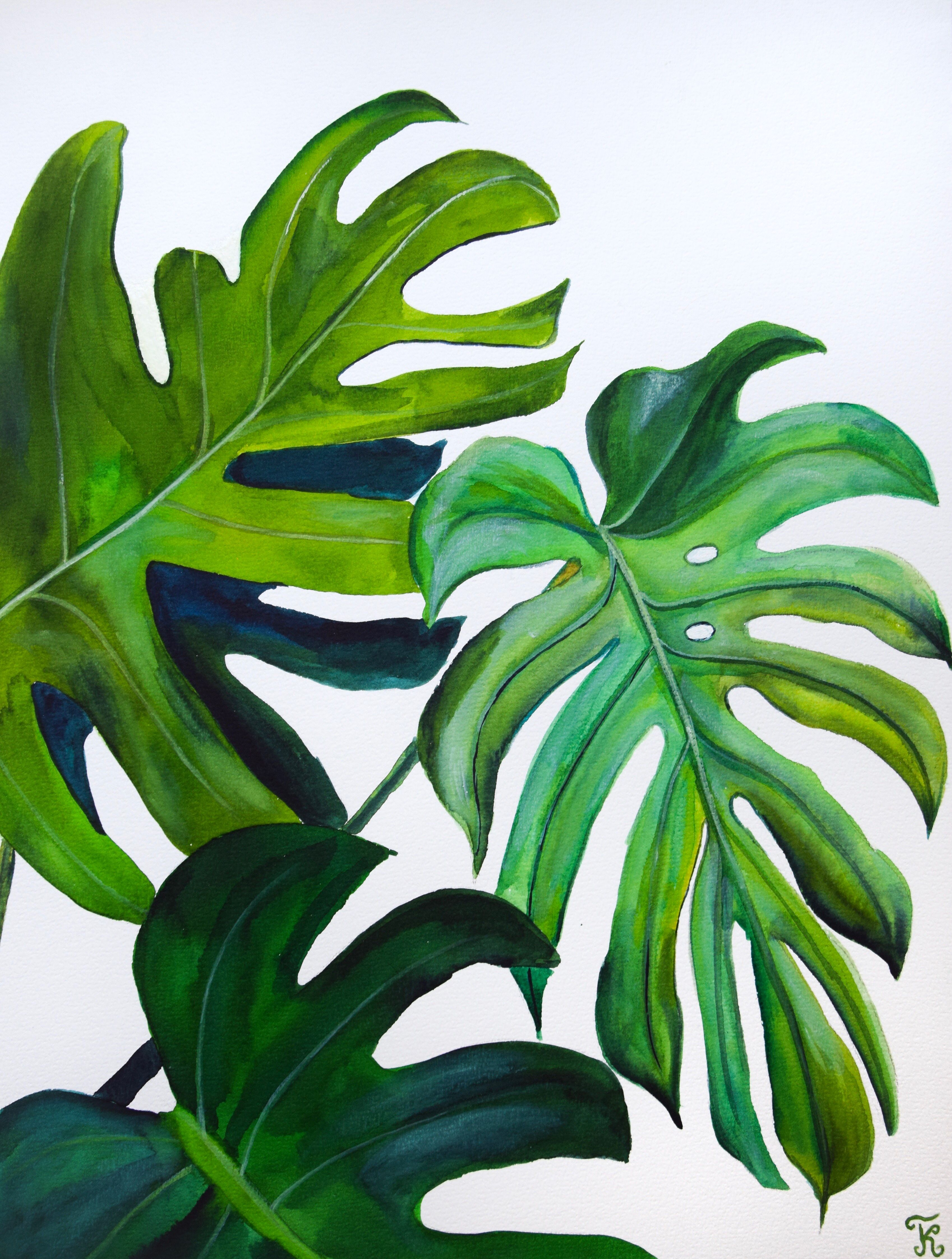 Monstera Leaves Watercolor Painting Print Botanical Abstract Etsy Plant Painting Painted Leaves Monstera Leaf When monstera deliciosa outgrows its current pot (about every two years), transplant to a new pot a few inches larger. pinterest