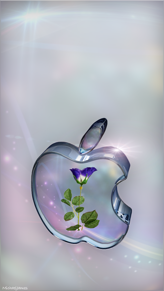 Rose In Glass Apple Apple Iphone 5s Hd Wallpapers Available For Free Download Apple Wallpaper Apple Logo Wallpaper Iphone Apple Wallpaper Iphone