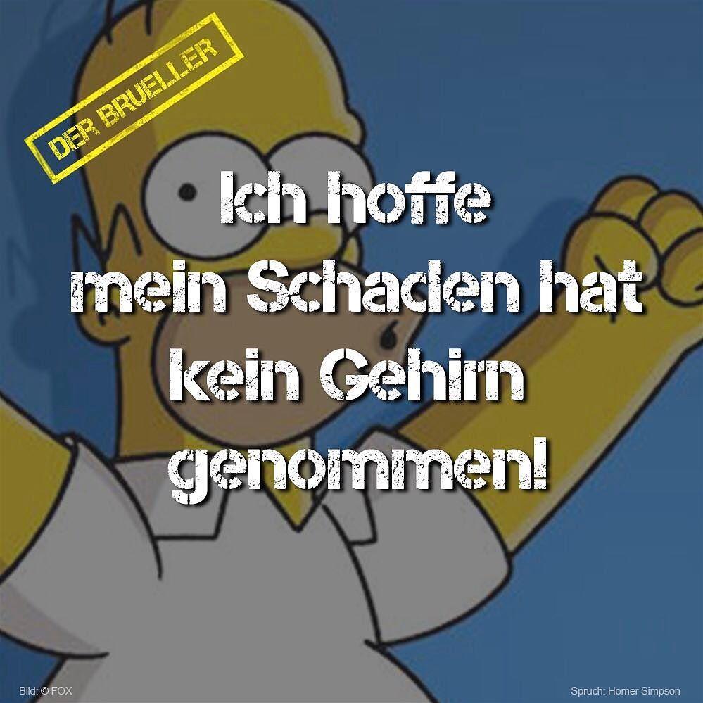 #Homer #Simpson #Schaden #gehirn #brüller #spruch #sprüche ...