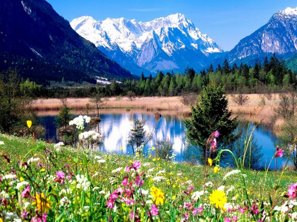 Spring Mountain Landscape With Images Beautiful Nature