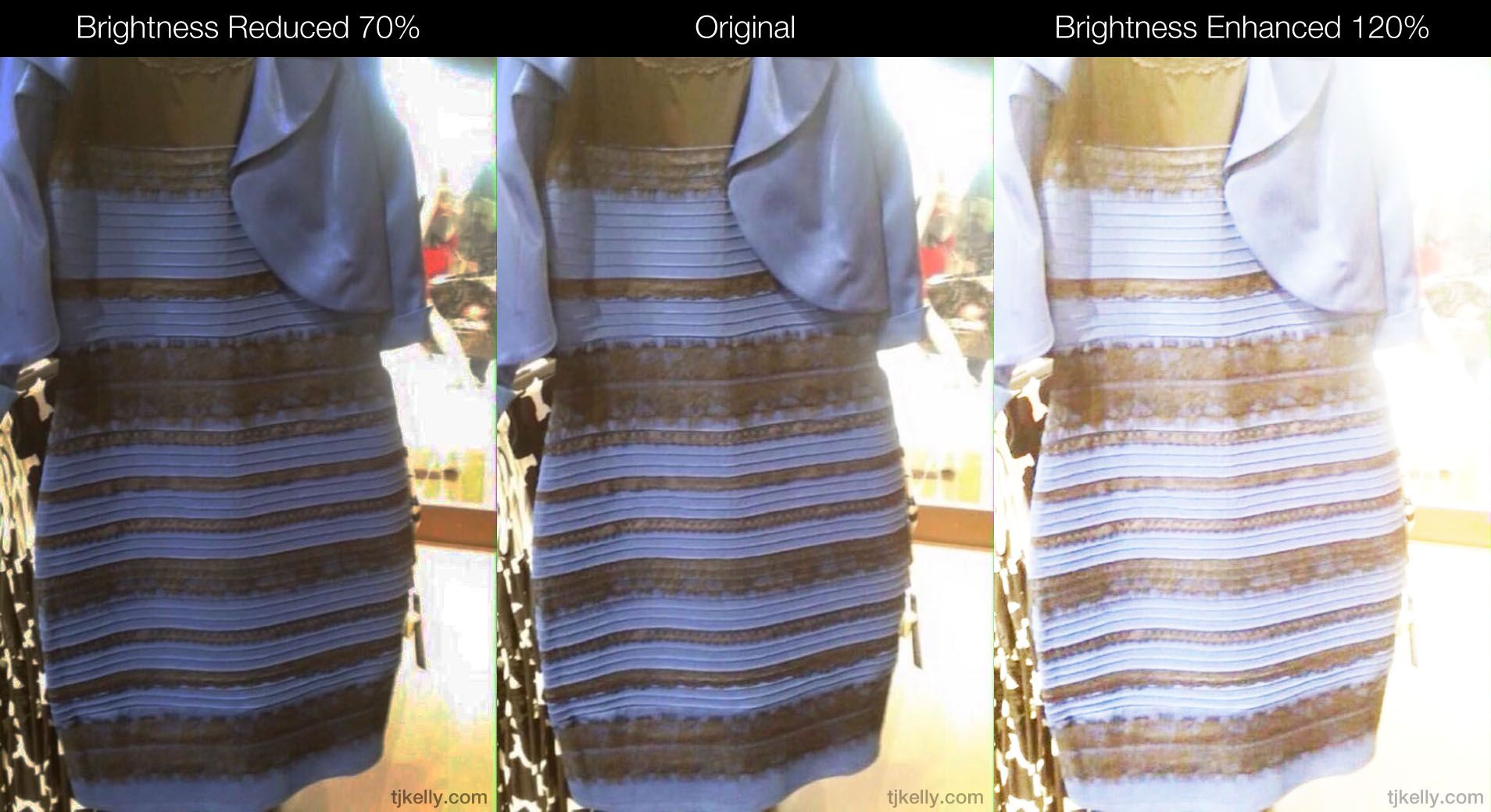 The Dress Is Black Blue But Here S Why You Can T Tell Tj Kelly Black And Blue Dress White Gold Dress Blue Dresses