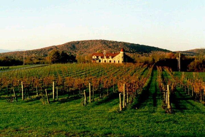 Horton Vineyards In Charlottesville Virginia The South