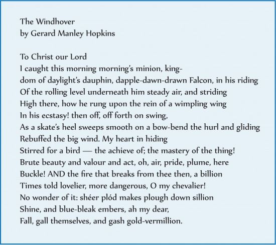the windhover analysis
