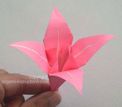 Origami Instructions Com Step By Step Instructions For Lots Of Oragami Folds Easy To Follow Clea Origami Lily Easy Origami Flower Origami Lily Instructions