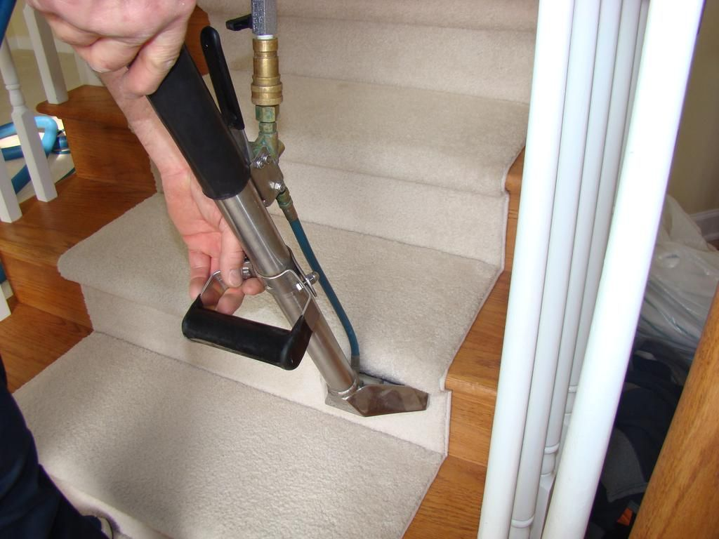 Pin on Rug Cleaners Services Charlotte