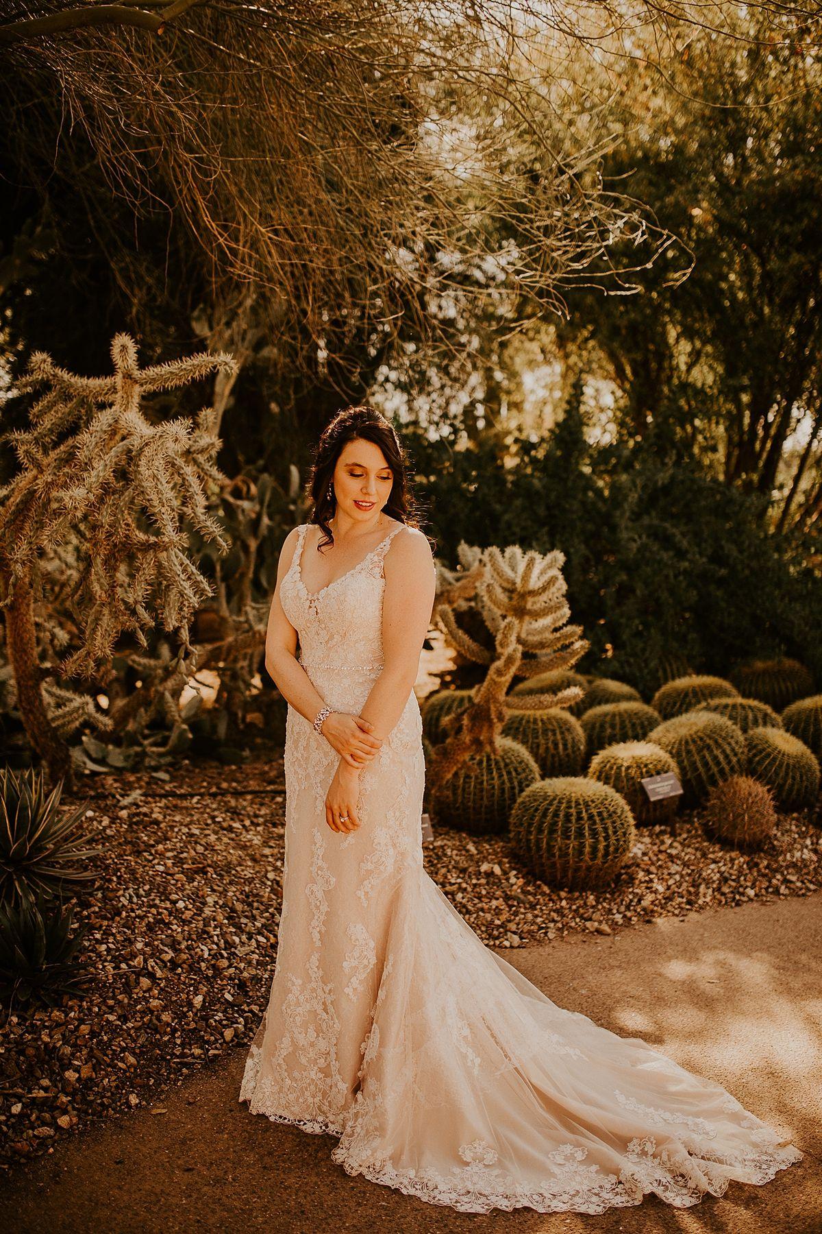 Desert Botanical Garden Intimate Wedding Phoenix Wedding