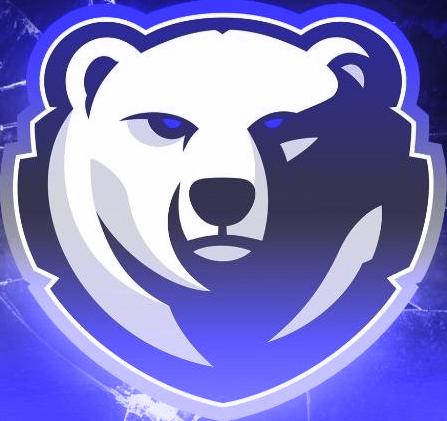 Pin by Paraclete Graphics on Mascot Logos Bear logo