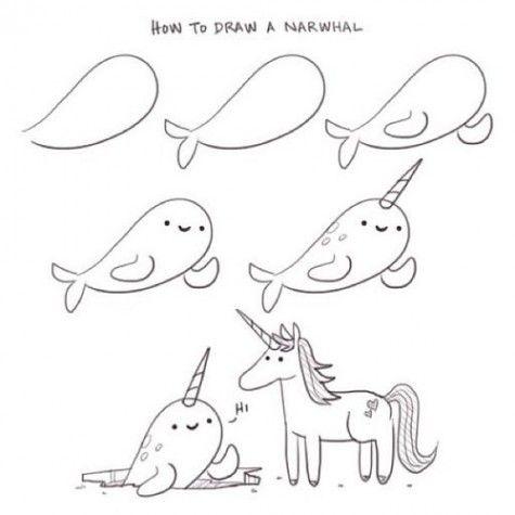 How to draw a narwhal by philip tseng supercutekawaii com