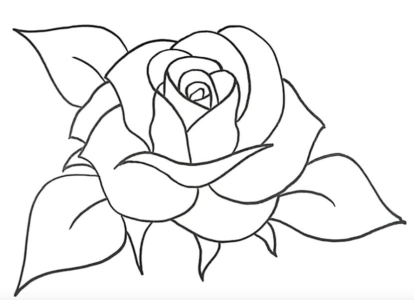Como Desenhar Uma Rosa Simples Passo A Passo Em 2020 Desenho