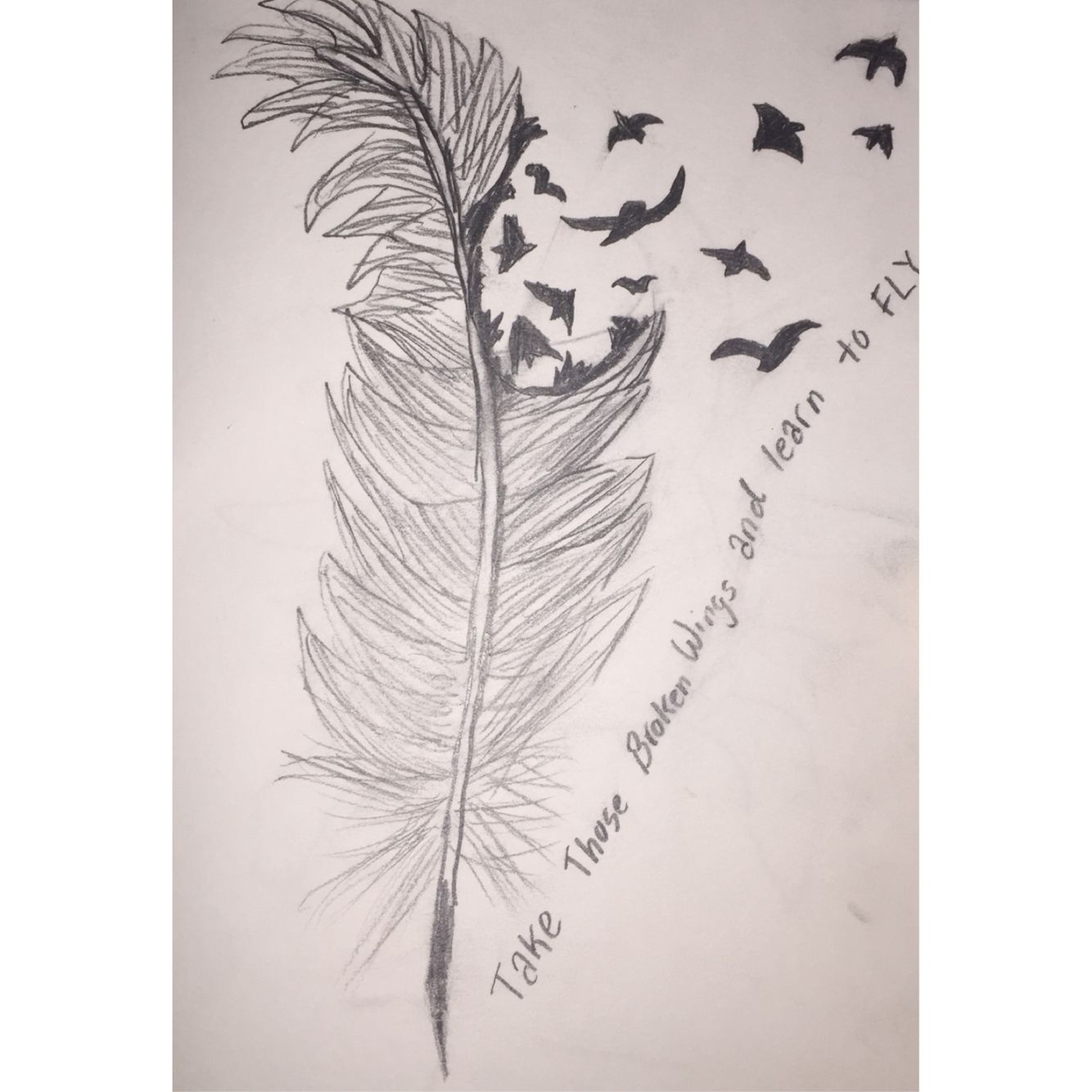 Take those broken wings and learn to fly Drawings