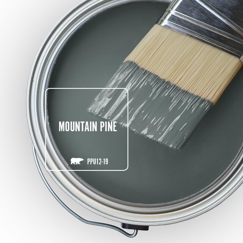 Behr Premium Plus 1 Gal Ppu12 19 Mountain Pine Satin Enamel Low Odor Interior Paint And Primer In One 730001 Behr Marquee Paint Exterior Paint Interior Paint