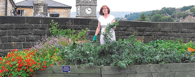 Todmorden: The Incredible Edible Town