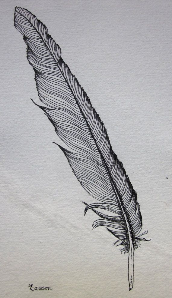 Black Feather 2 -- original ink drawing #woodcarvingtoo