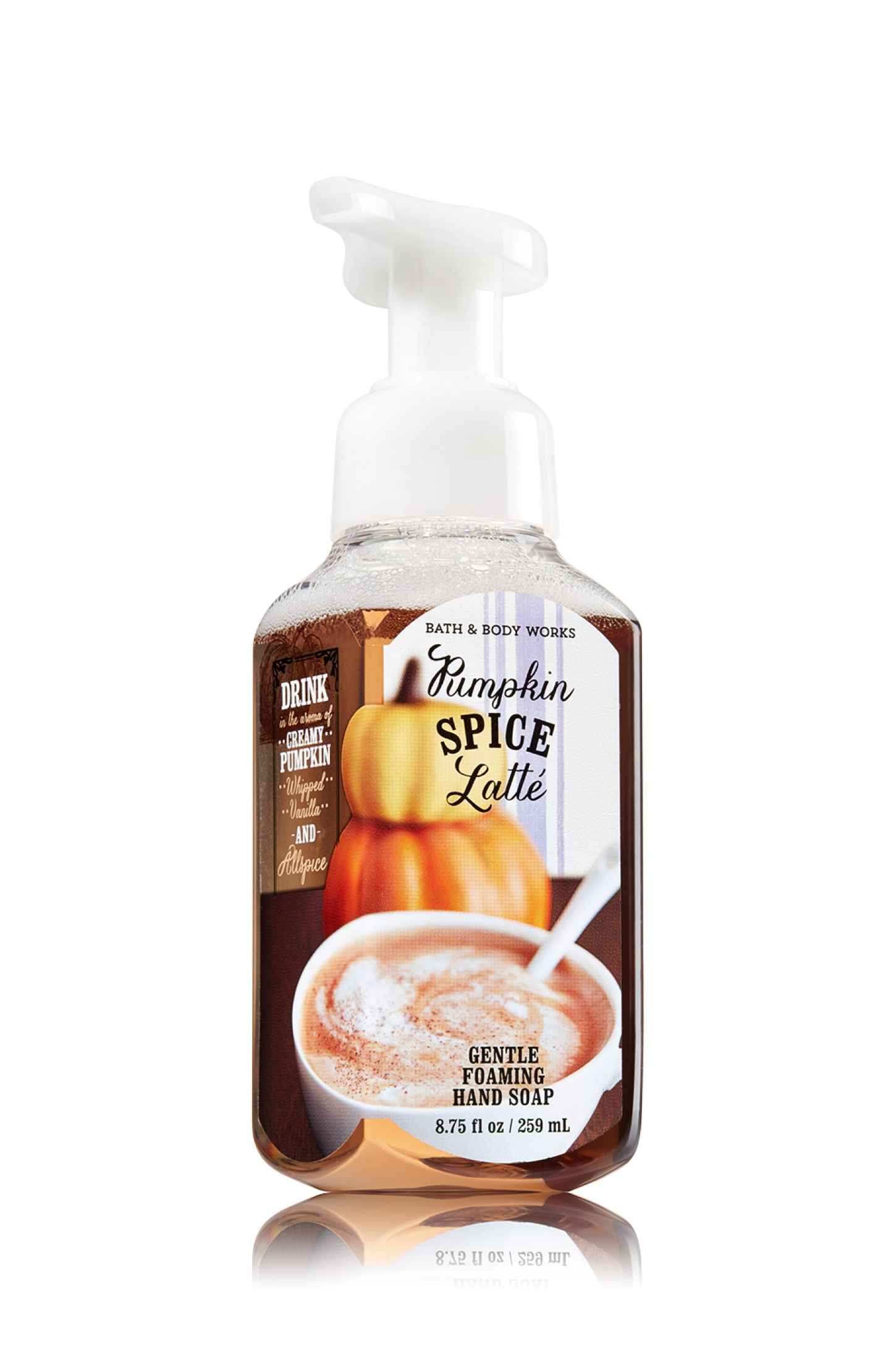 Pumpkin Spice Latte Gentle Foaming Hand Soap Soap Sanitizer