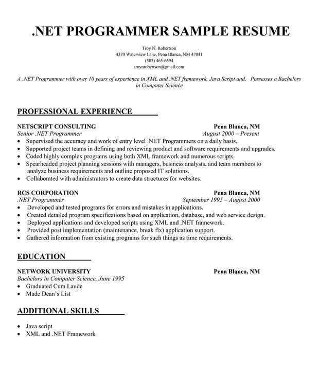 net programmer resume sample       resumecompanion com
