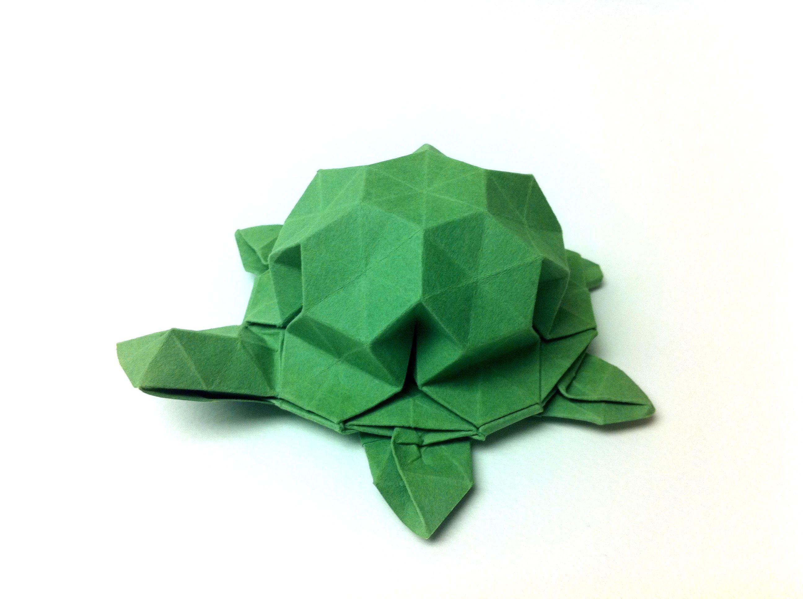 Easy Origami Turtle Instructions Image Gallery Photonesta