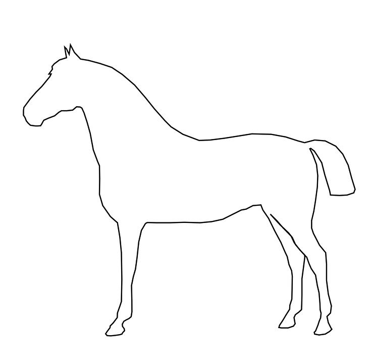 free image on pixabay horse animal mammal barn equine
