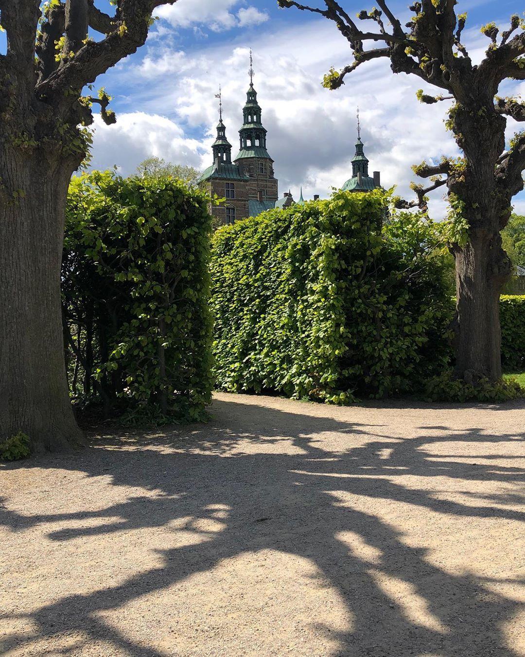Rosenborgcastle Rosenborg Rosenborgslot Schloss Schloss Castle Parka Parks Hecke Schatten Danemark Danemark Kope Gartengestaltung Parks Garten