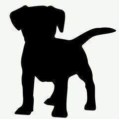 Dog Silhouette On White Background Dog Stencil Silhouette Art Animal Silhouette