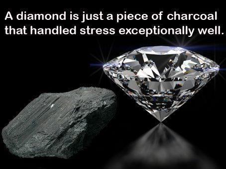 Do you crumble or transform?