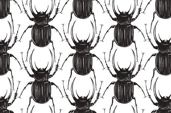 Black Beetle Insect Seamless Pattern  Patterns | Patterns