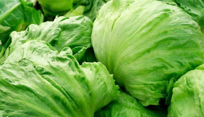 Da haben wir den Salat! #salad #storage #trick #howto #store #tipp