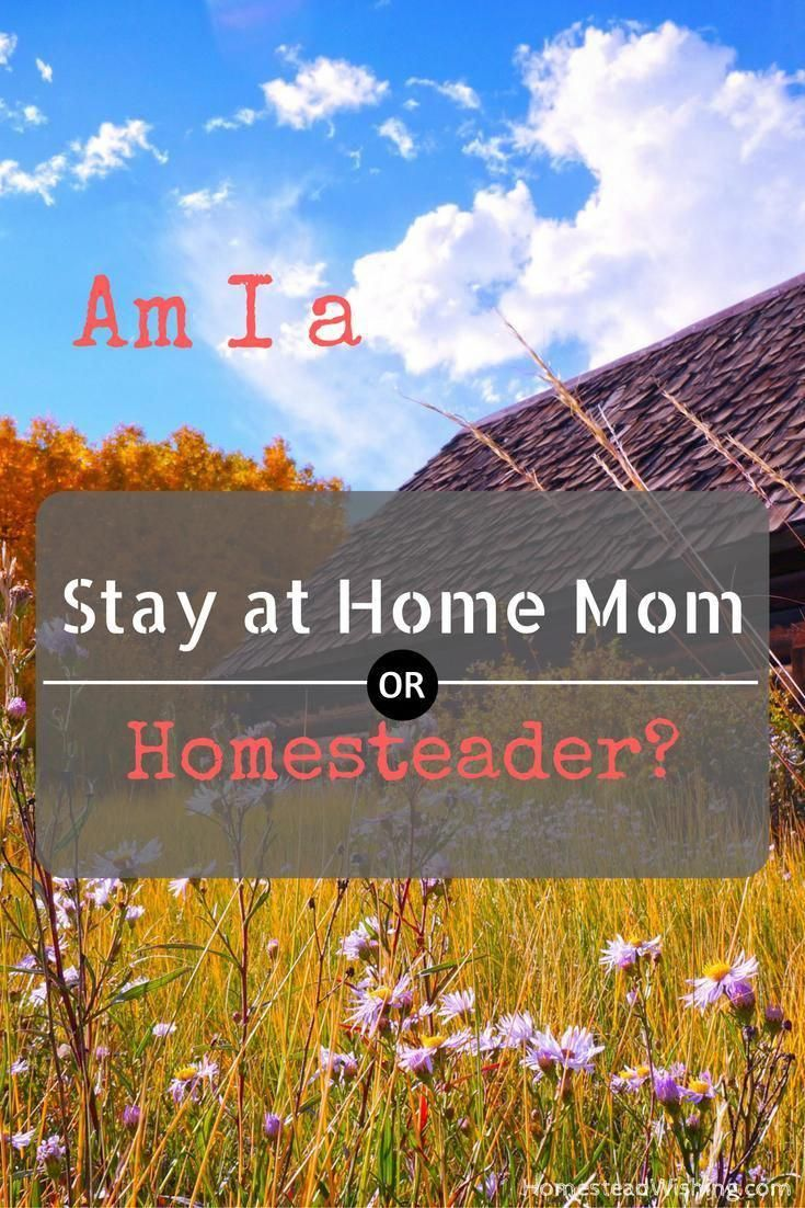 Am I a Stay at Home Mom, or a Homesteader? When I was ...