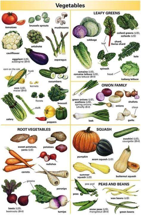 Vegetais E Legumes Com Imagens Gramatica Inglesa Vocabulario