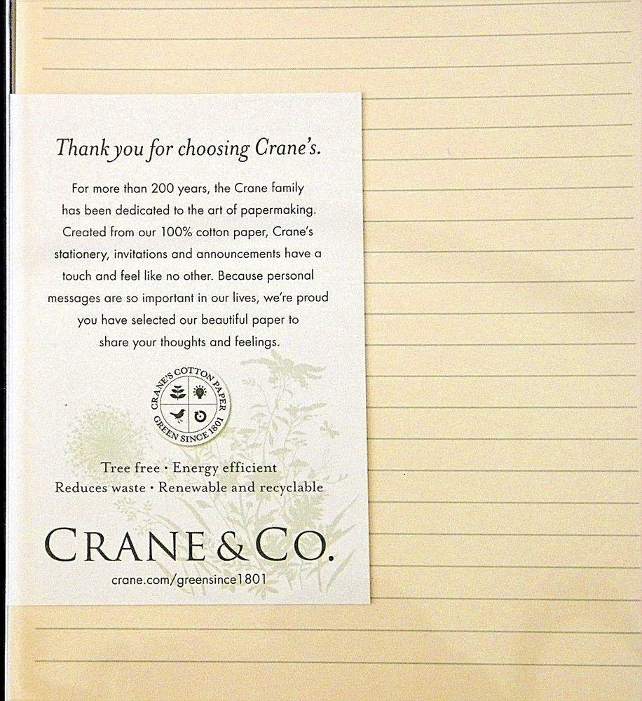 Crane co stationery 20 ruled half sheets envelopes