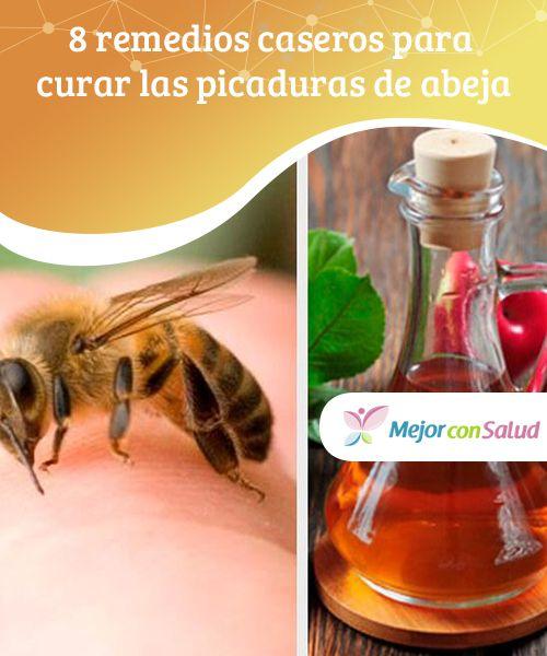 8 remedios caseros para curar las picaduras de abeja   Picadura ...