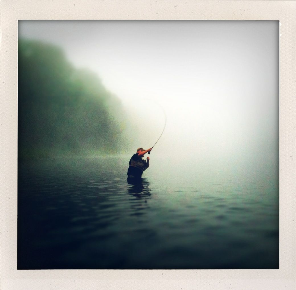 The morning mist encompasses!