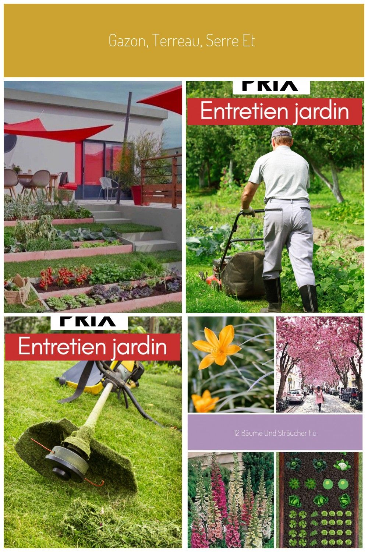 Gazon Terreau Serre Et Entretien Du Jardin Leroy Merlin Entretien Entretiendujardin Gazon Jardin Leroy M En 2020 Entretien Du Jardin Gazon Entretien Jardin