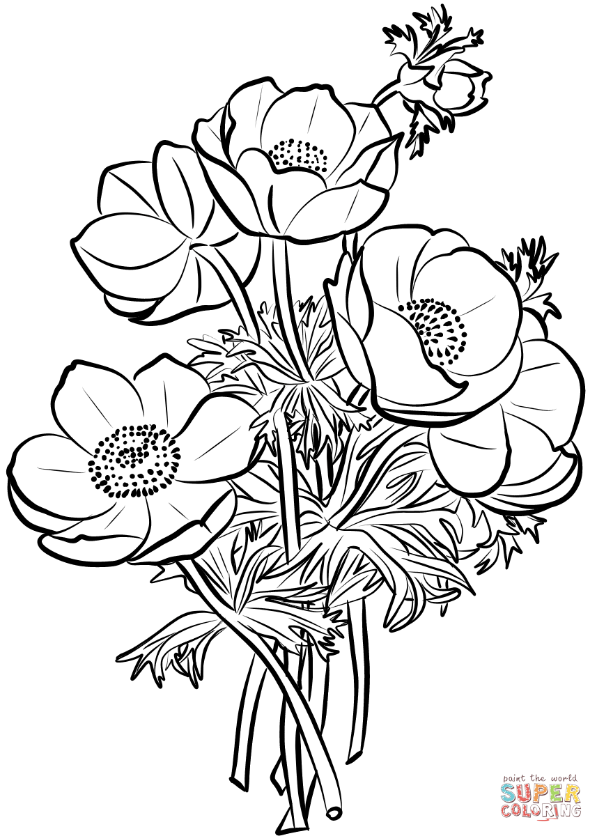 Poppies Bouquet Coloring Page Free Printable Coloring Pages Coloring Pages Poppy Drawing Flower Coloring Pages