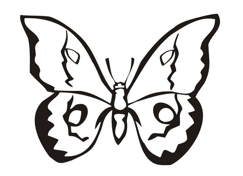 Gratis Malvorlage Schmetterlinge_00410 in Schmetterlinge
