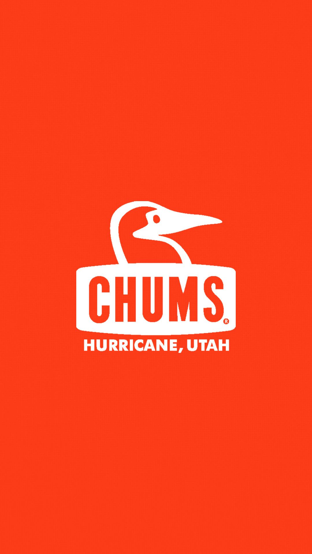 チャムス Chums40 キャンプ イラスト ステッカー ロゴ ステッカー
