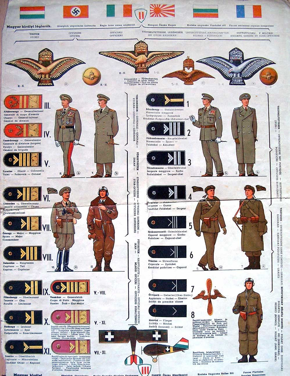 Uniforms and insignia of the Schutzstaffel | Military Wiki ...