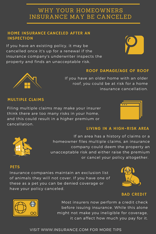 What To Do If Your Homeowners Insurance Is Cancelled With Images