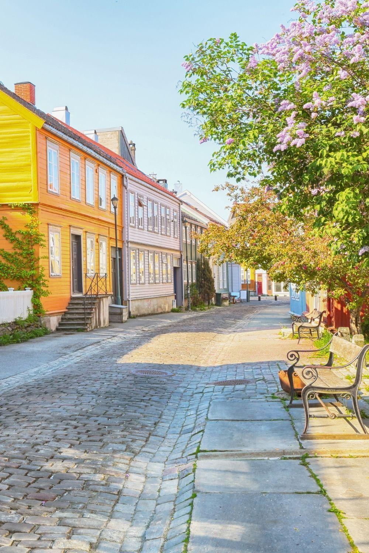 A Wander Down Trondheims Bakklandet - Life in Norway in