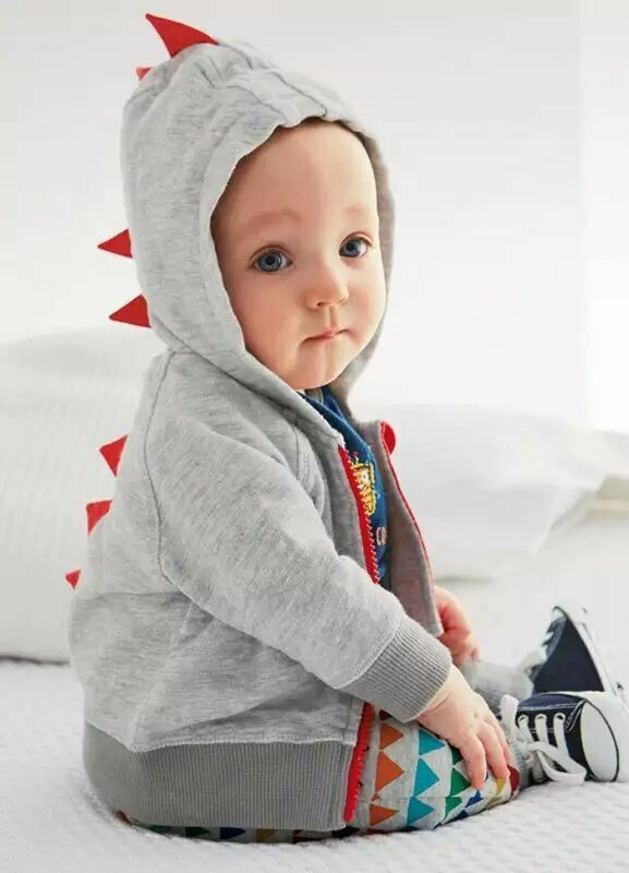 55cc3ba9c Newborn Baby Dinosaur sweatshirt for kids Grey hood clothes boy and ...