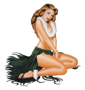 Prompt, sexy hawaiian girl art