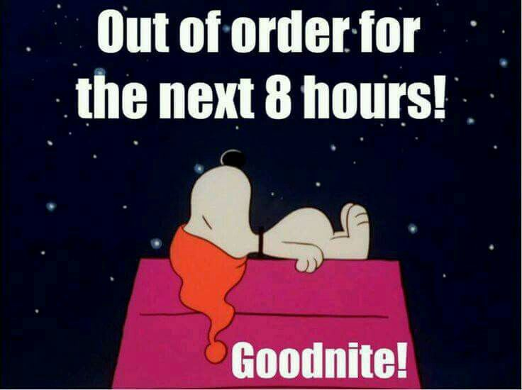 Good night Snoopy | Good night funny, Funny good night ...