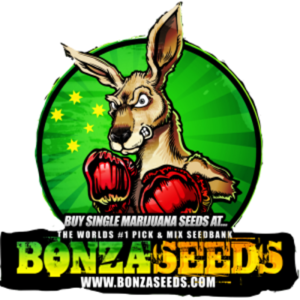 Image result for bonza seed bank logo