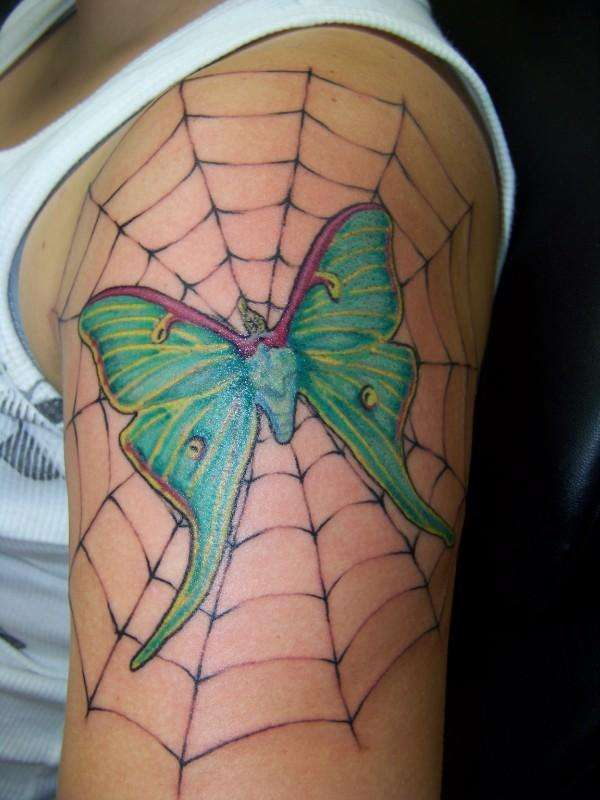 5a779a872 moth tattoos | Luna Moth tattoo | Tattoos | Luna moth tattoo, Moth ...