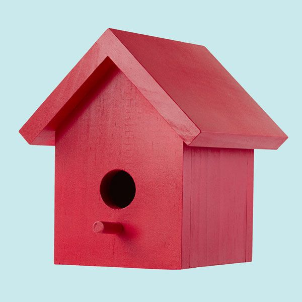 easy one board bird house plans - Big Bird House Plans