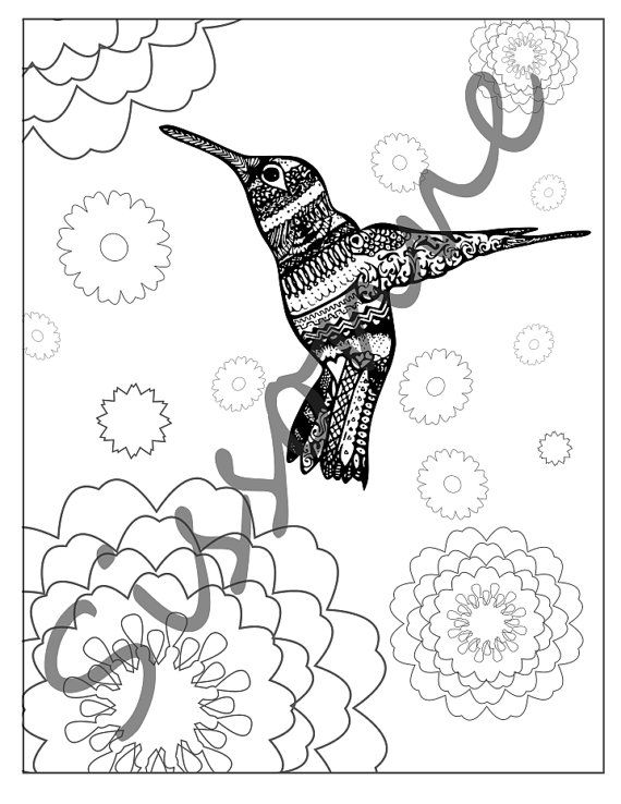 Coloring Page Hummingbird Among Flowers By Sissonne On Etsy